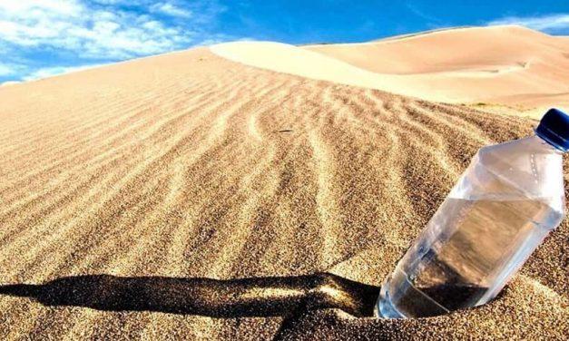 Antes de formarles, despiértales la sed
