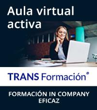 formación virtual síncrona